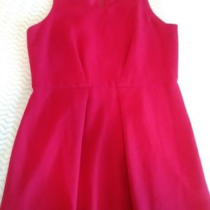 A ladies size 10P sleeveless red dress.